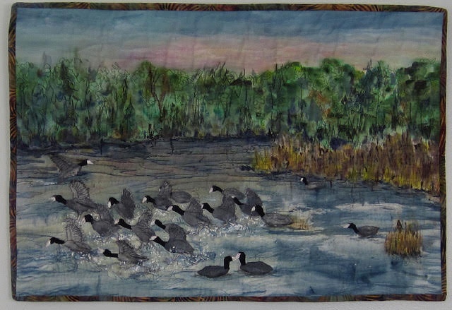 Commotion of Coots